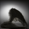FallenAngels-ZARA