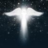 SeraphimAngels-ZARA