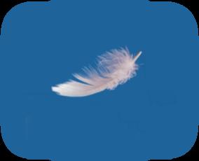 DivineGuidance2-AngelReadingsByZARA