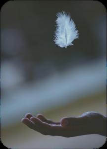 SignsOfAngels-AngelReadingsByZARA