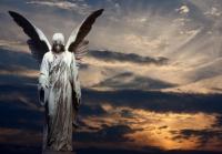 Angels have a Purpose - ZARA