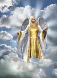 Angel Advocate - ZARA