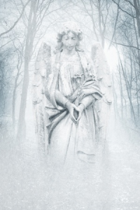 Types of Angels - ZARA