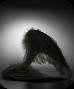 AngelsFallenFromGrace-AngelReadingsByZARA