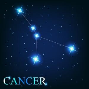 ConstellationsareConclusions-ZARA